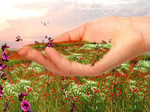 трава в руке