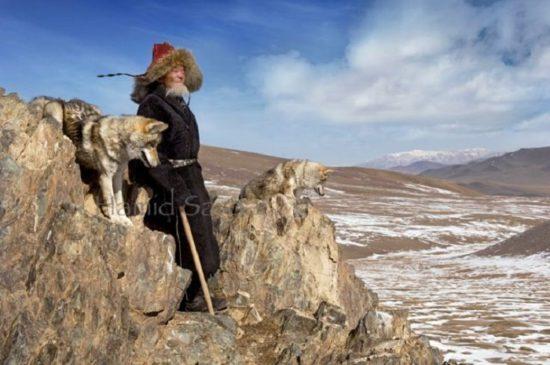монгол и волки