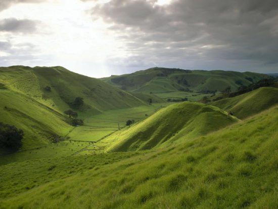 холмы и овраги