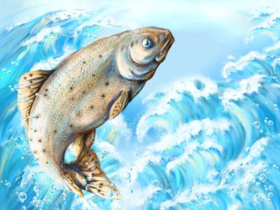 сон с рыбкой